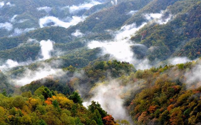 陕西最南端的秘境小城: 被称为小神农架, 连接三省风景堪称一绝..