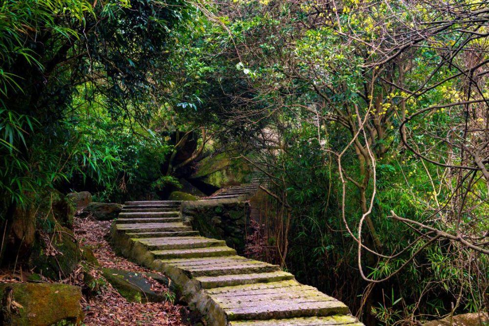 一条百折瀑,一座千年寺——瑶溪记